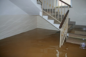 Flood Restoration Scottsdale