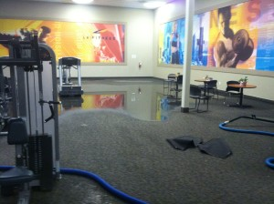 Water Damage Restoration Process 3 Most Important Steps