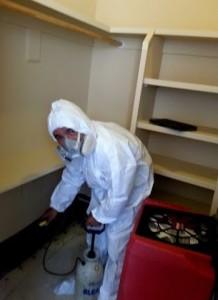 mold-removal-scottsdale-phoenix-az-002