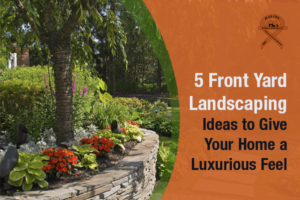 Front yard landscaping ideas from a professional outdoor landscape contractor in Scottsdale to give your home a luxurious feel